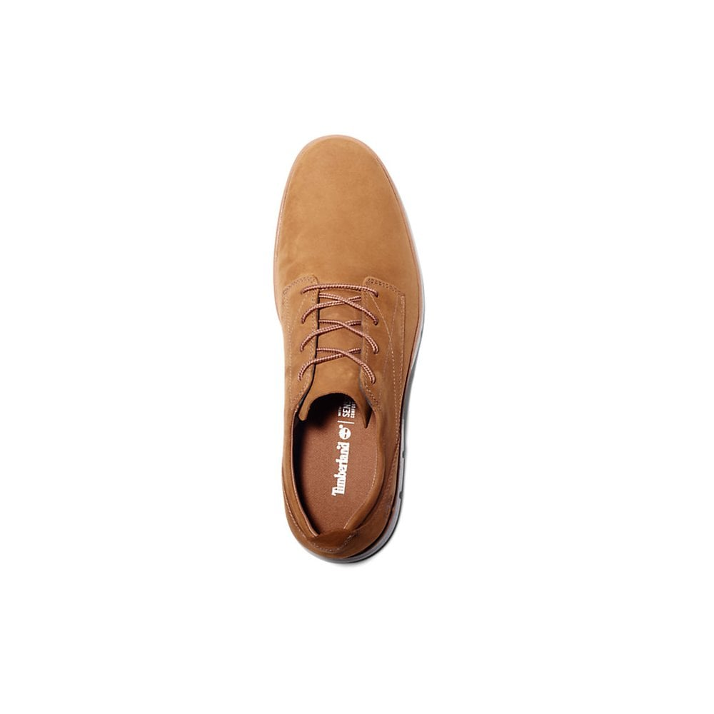 Timberland Bradstreet Sneaker - Mens